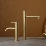 Einhebelmischer Diametrotrentacinque | Oberfläche: champagner satiniert | F37
